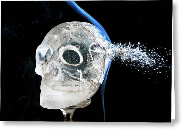 Ice Skullpture Greeting Card