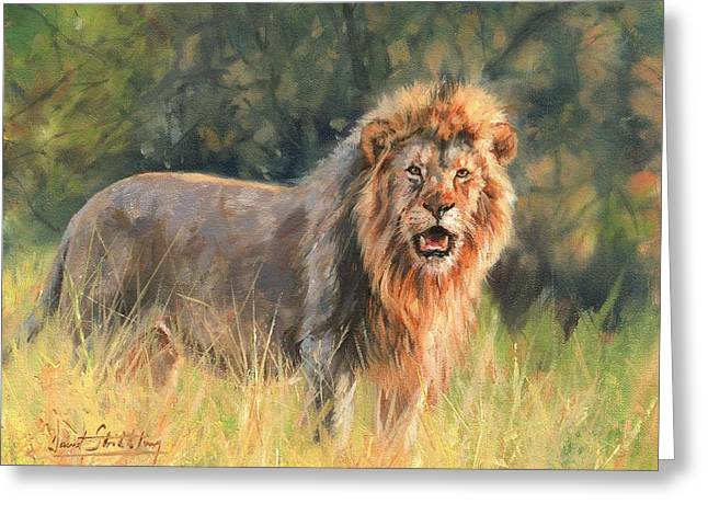 Greeting Card featuring the painting Lion by David Stribbling