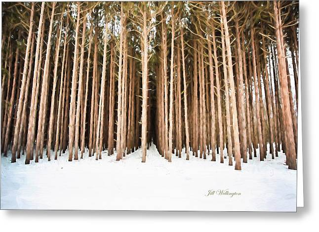 Michigan Winter Greeting Card