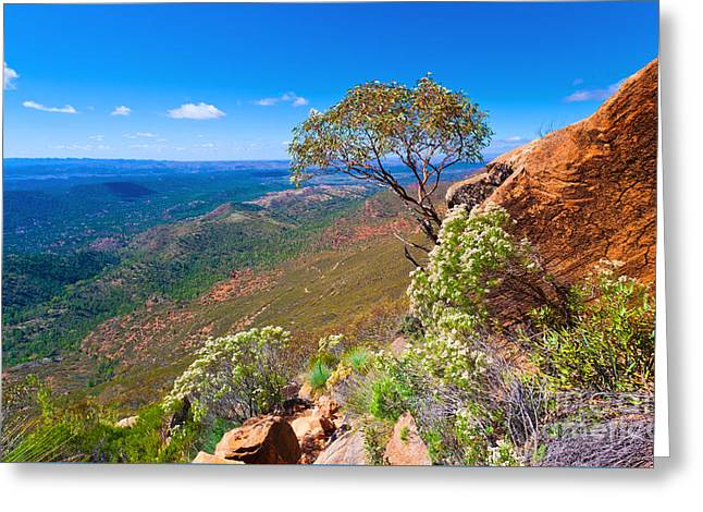 Greeting Card featuring the photograph Wilpena Pound  by Bill  Robinson