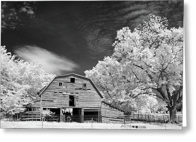 90 Year Old Barn Greeting Card by James Barber