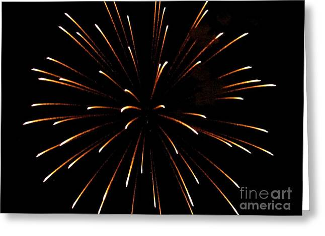 A 4th Of July Flower Greeting Card by Robert Wolverton Jr
