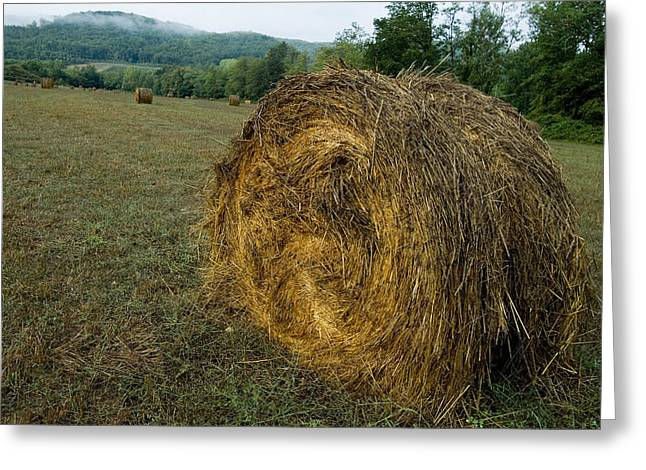 A Bail Of Hay In A Field In Tuscany Greeting Card