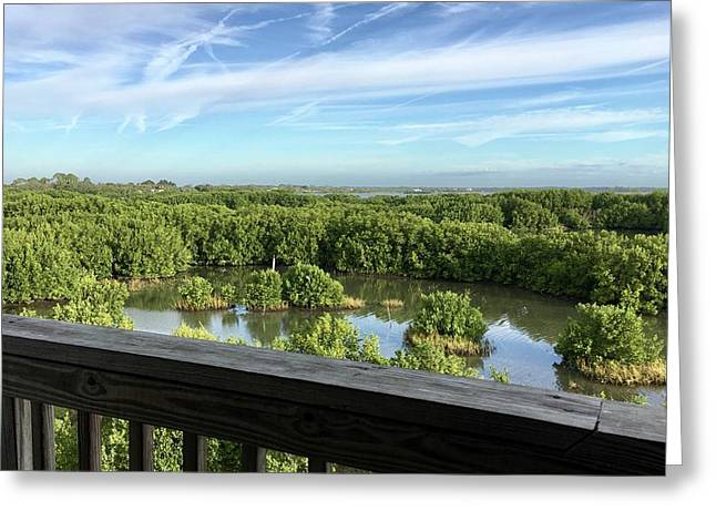 A Balcony View Greeting Card by Terry Cobb