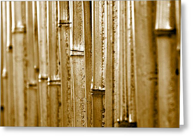 A Bamboo Wall Greeting Card by Sherry Hallemeier