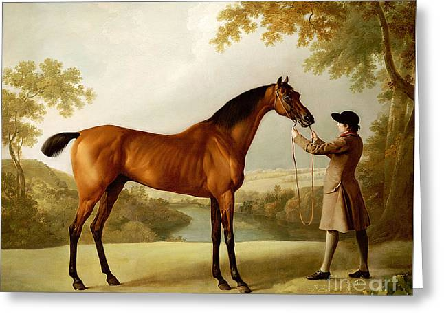 A Bay Racehorse Held By A Groom In An Extensive Landscape Greeting Card by George Stubbs