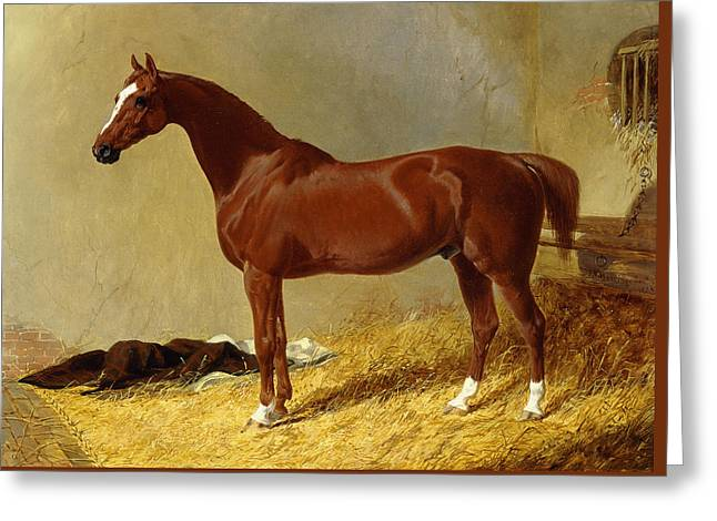 A Bay Racehorse In A Stall, 1843 Greeting Card by John Frederick Herring Snr