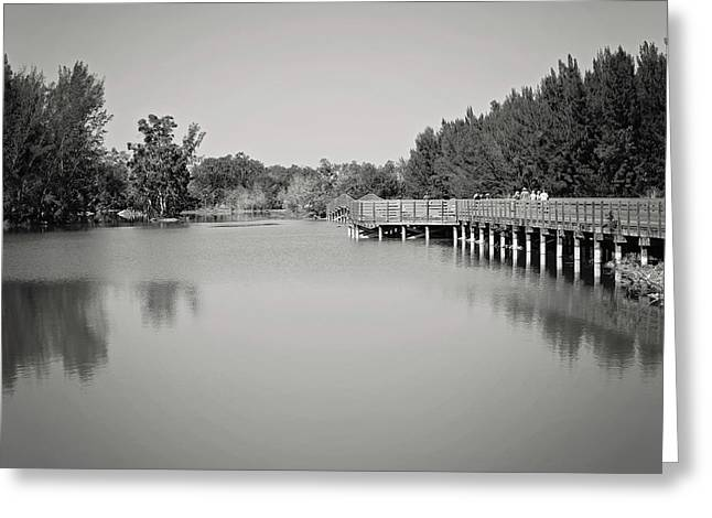Greeting Card featuring the photograph A Beautiful Day by Kim Hojnacki