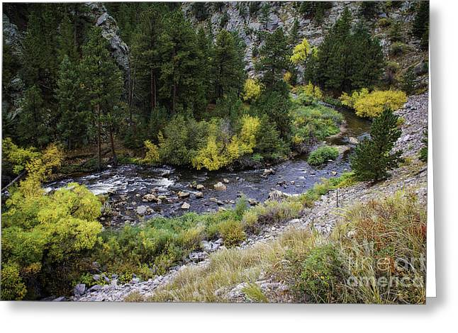 A Bend In The River Greeting Card by Jon Burch Photography