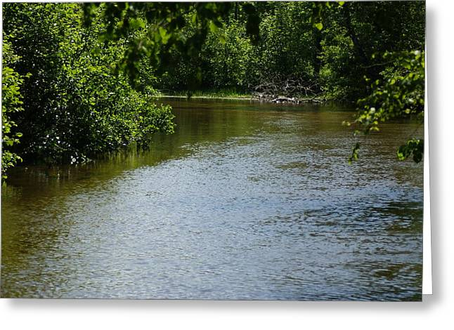 Greeting Card featuring the photograph A Bend In The River by Ron Read