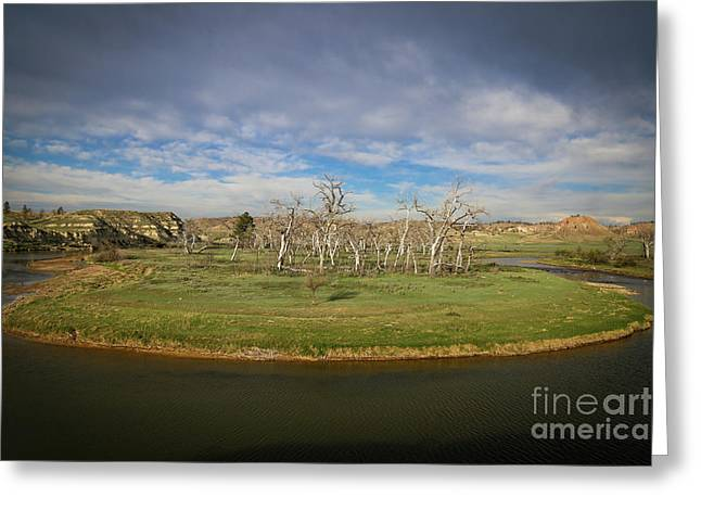 A Bend In The River Greeting Card by Shevin Childers