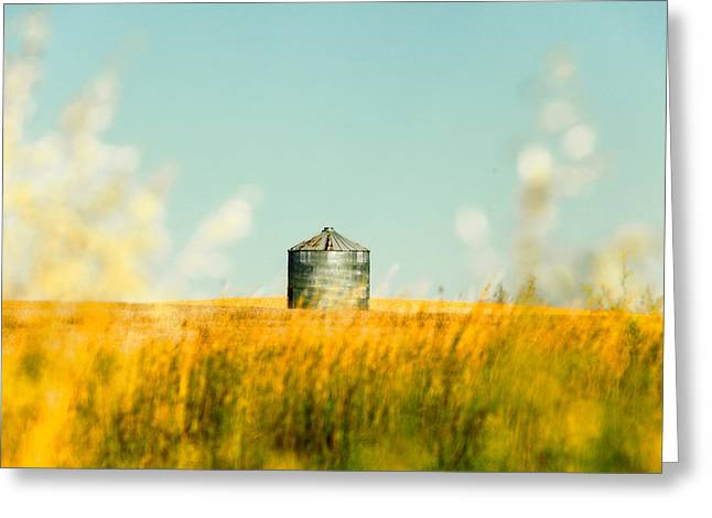 A Bin Stands Alone Greeting Card by Todd Klassy