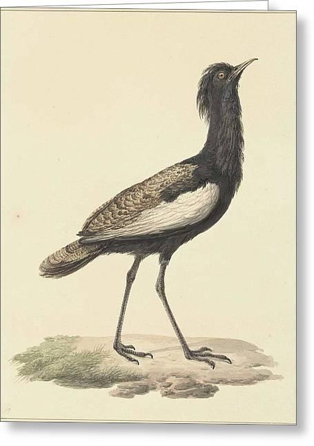 A Bird Standing On The Ground Greeting Card by Pieter Pietersz