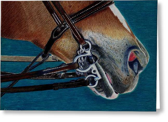 A Bit Of Control - Horse Bridle Painting Greeting Card
