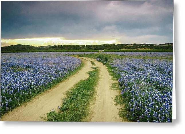 A Bluebonnet Trail Under Stormy Sky - Texas Greeting Card