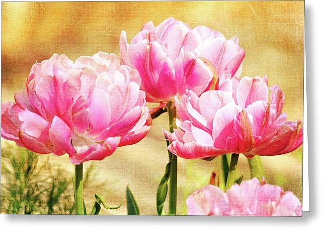 A Bouquet Of Tulips Greeting Card by Trina Ansel