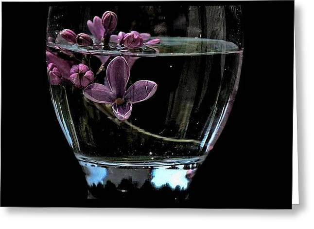 A Bowl Of Lilacs Greeting Card by Marija Djedovic