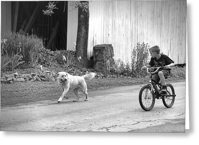 A Boy And His Dog Bw Greeting Card by Phyllis Taylor