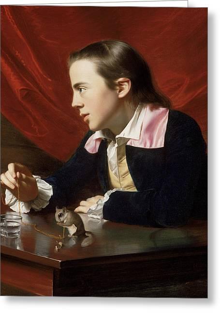 A Boy With A Flying Squirrel  Greeting Card by John Singleton Copley