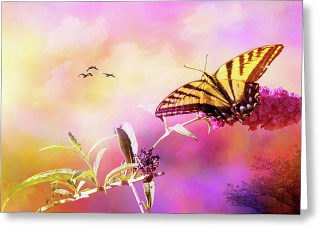 A Butterfly Good Morning Greeting Card