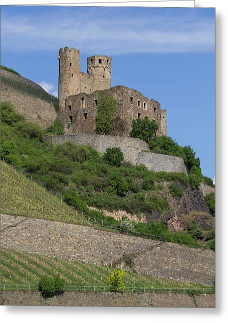A Castle Among The Vineyards Greeting Card