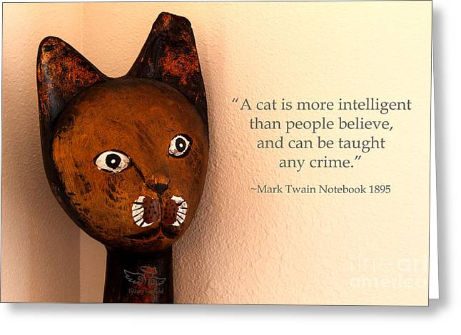 Greeting Card featuring the photograph A Cat Is More Intelligent by Beauty For God