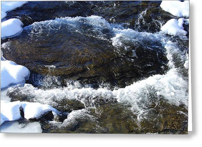 A Chilly Froth Circles A Resting Stone Greeting Card by Terrance DePietro