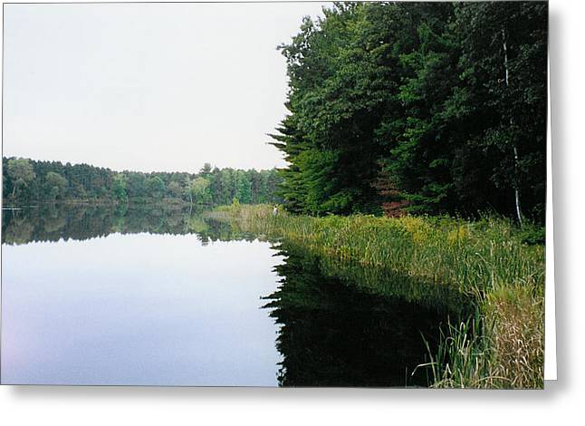 A Clear Day Greeting Card by Tom Hefko