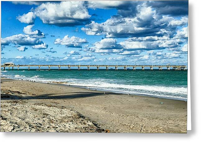 A Cold Day In Florida 62f Greeting Card by Dieter Lesche