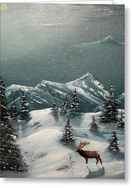 A Cold Montana Night Greeting Card