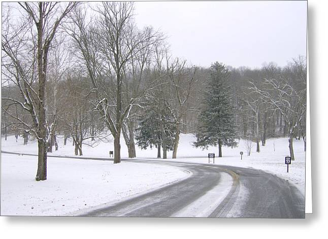 Greeting Card featuring the photograph A Cold Winter's Day by Skyler Tipton