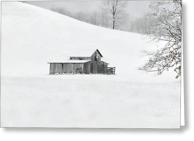 A Cold Winter's Day Greeting Card by Benanne Stiens