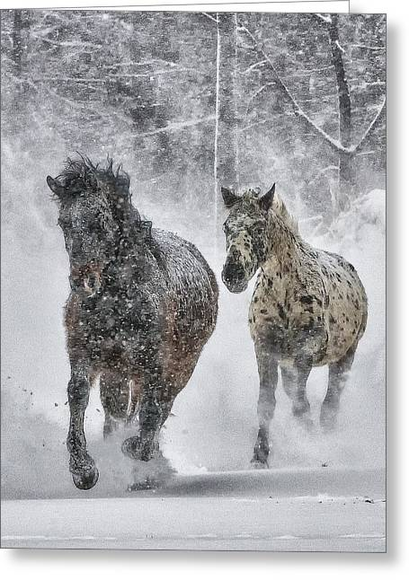 Greeting Card featuring the photograph A Cold Winter's Run by Wade Aiken