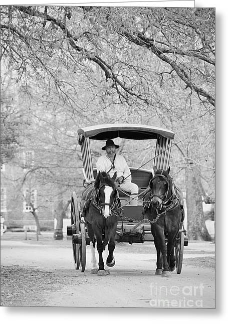 A Colonial Carriage In Black And White Greeting Card