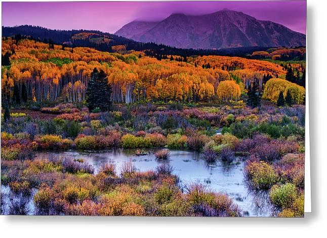 A Colorado Fall Along Kebler Pass Greeting Card