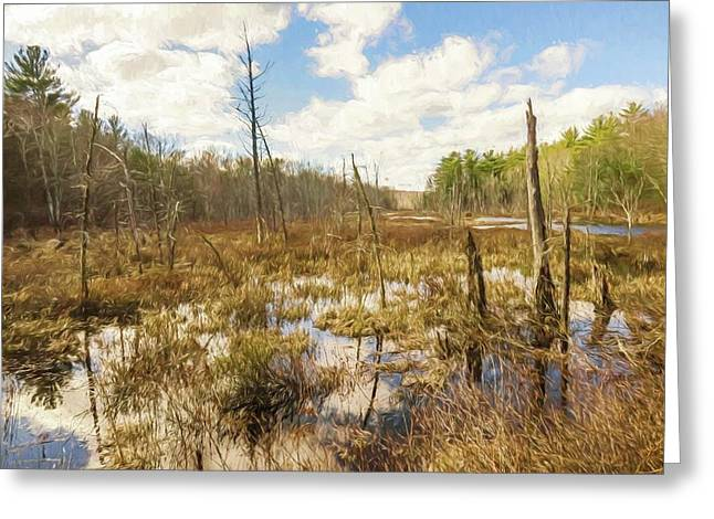 A Connecticut Marsh Greeting Card