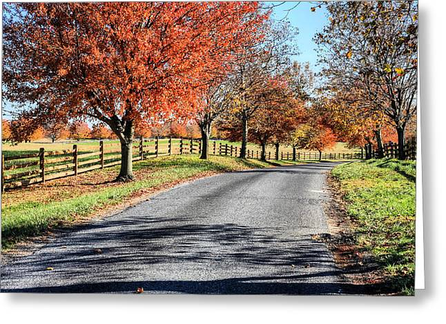 Delmarva Greeting Cards - A Country Drive Greeting Card by JC Findley