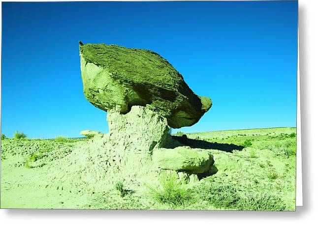 A Crooked Toad Stool New Mexico Greeting Card