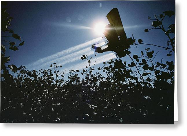 """""""cotton Fields"""" Greeting Cards - A Crop Duster Spraying A Cotton Field Greeting Card by Kenneth Garrett"""