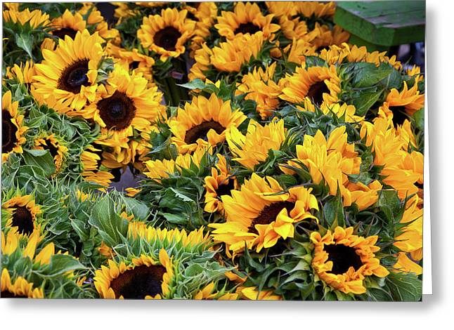 Greeting Card featuring the photograph A Crowd Of Sunflowers by Susan Cole Kelly