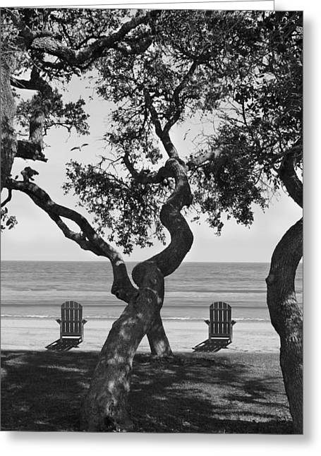 A Day At The Beach Bw Greeting Card by Mike McGlothlen