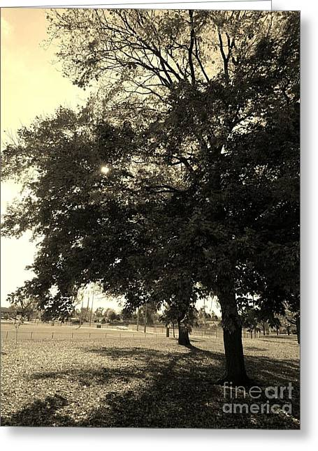A Day At The Park - Sepia Greeting Card by Scott D Van Osdol