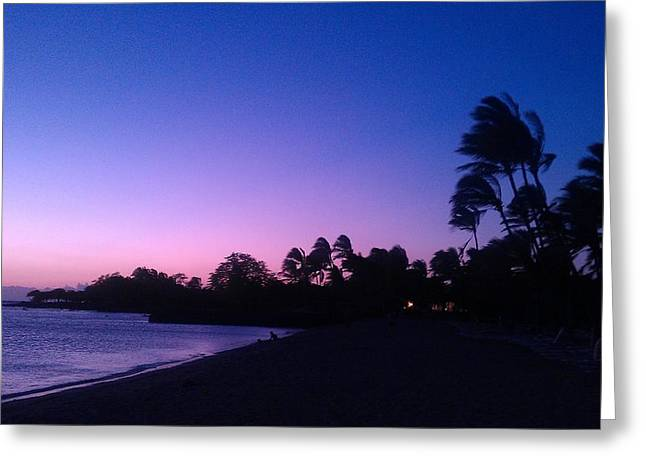 A Day In Paradise Greeting Card by Anne Gerstenberger