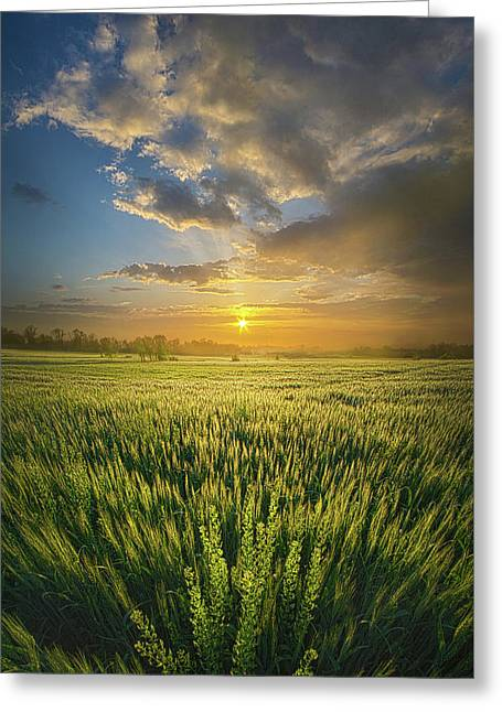 A Day In The Life Greeting Card by Phil Koch