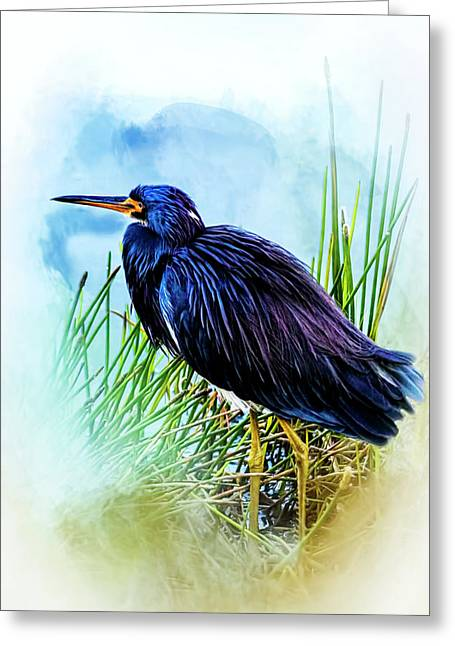 A Day In The Marsh Greeting Card by Cyndy Doty
