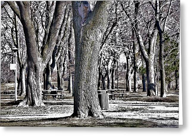 A Day In The Park Greeting Card by Reb Frost