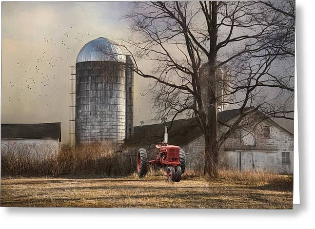 Greeting Card featuring the photograph A Day Off by Robin-lee Vieira