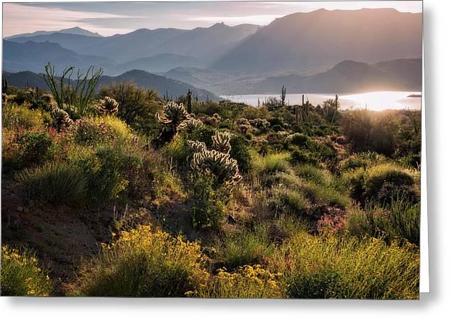 Greeting Card featuring the photograph A Desert Spring Morning  by Saija Lehtonen