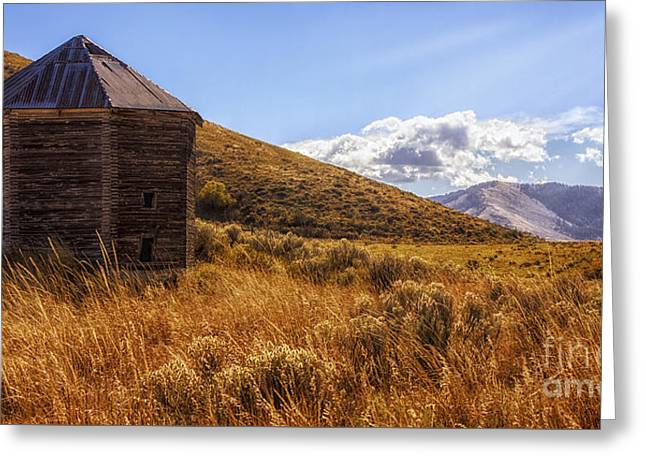 A Deserted Silo Greeting Card by Priscilla Burgers