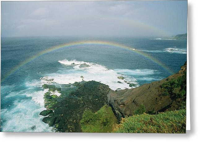 ; Maui Greeting Cards - A Double Rainbow Brightens A Rainy Day Greeting Card by Marc Moritsch